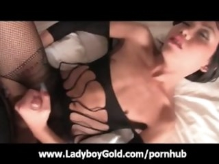 asian ladyboygold